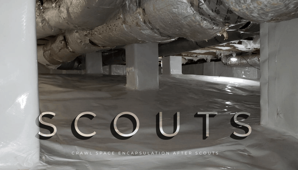 Crawlspace encapsulation in Greenville, SC from Scout's Pest Control