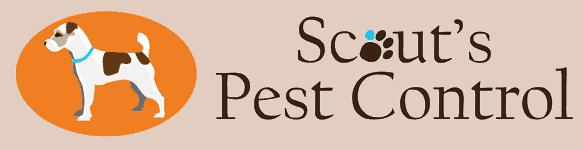 scouts pest control anderson sc