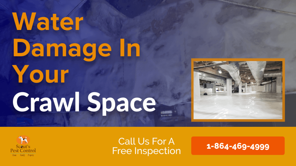 how water damages your crawl space