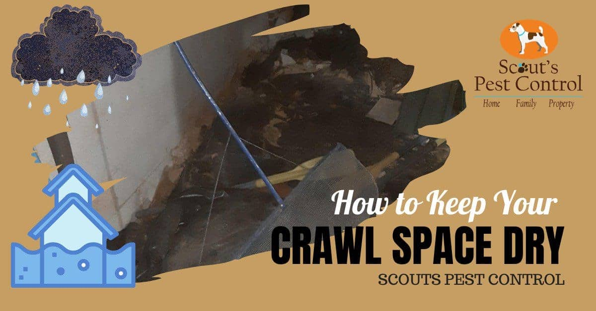 how to keep your crawl space dry