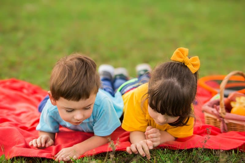 two children on a picnic. a boy in a blue t-shirt and a girl in yellow lie on a red plaid and examine fire ants and insects in the grass.