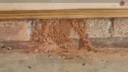 why waterproofing a crawl space by encapsulation is a good investment
