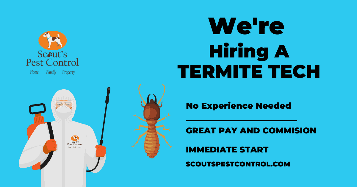 hiring in greenville - termite technician