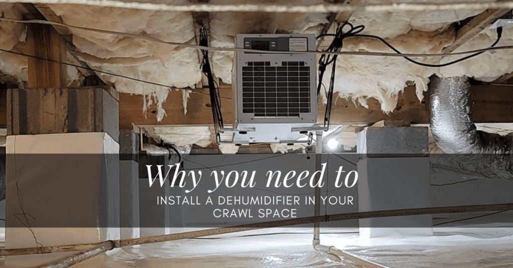 install a dehumidifier in your crawl space